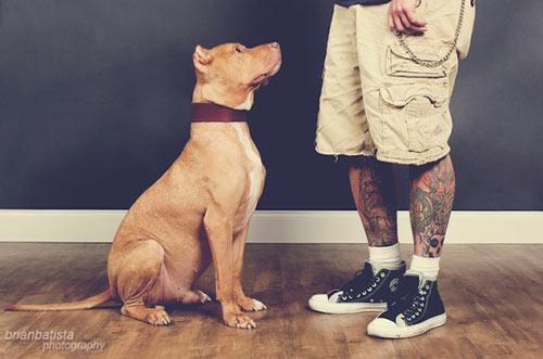 tattoosRescues5