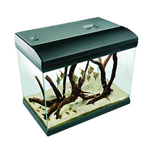 acquario-nexa-mirabello