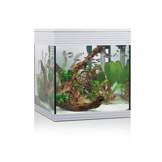acquario-PURE-M-LED